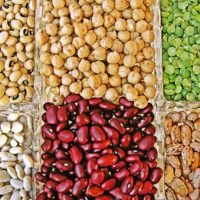 top-7-best-plant-based-proteins-for-your-diet